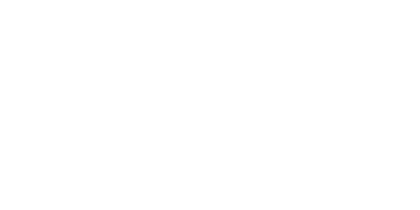 Appsoft Development